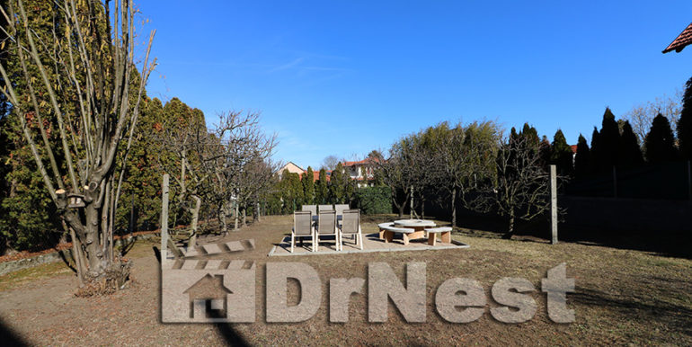 dr-IMG_2104